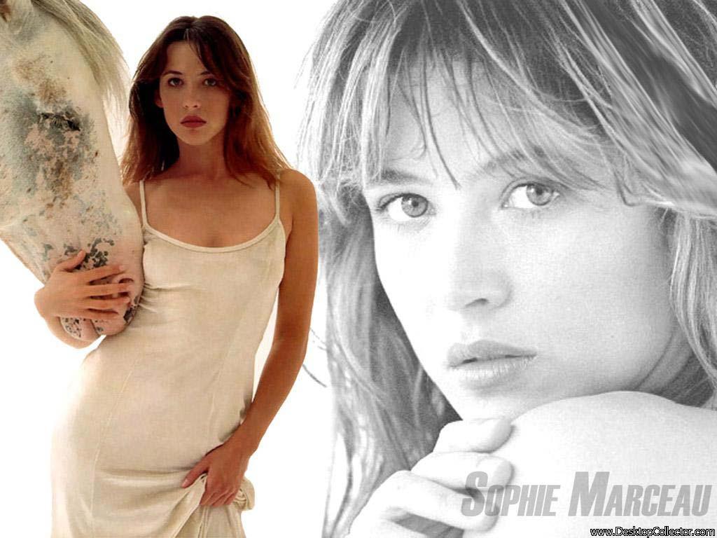 Sophie Marceau - Picture